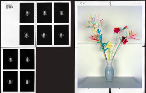 Jaap Scheeren. Flowers