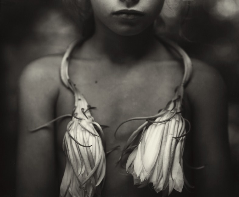 sally-mann-night-blooming