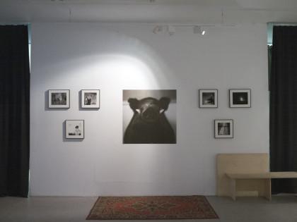 Фотохроника: Выставка Андрея Ленкевича «Язычество» в галерее ФотоДепартамент
