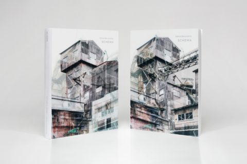 Gronsky_Babushkina_book