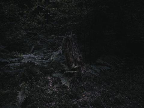 Salvatore_Vitale_The_moon_was_broken_09-1920x1440