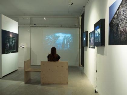 Фотохроника выставки Евгения Молодцова «Вепсский лес»
